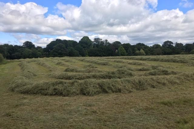 Hay for sale Tenbury Wells, Worcestershire